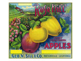 Rose Hill Brand Apple Label  Watsonville  California