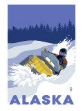 Alaska  Snowmobile Scene