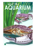 Visit the Aquarium  Dungeness Crab Scene