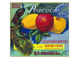 Peacock Brand Apple Label  Watsonville  California