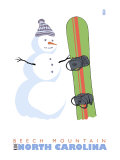 Beech Mountain  North Carolina  Snowman with Snowboard