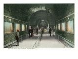 Detroit  Michigan  Interior View of the Belle Isle Aquarium