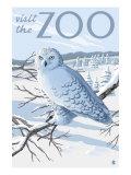 Visit the Zoo  Snowy Owl Scene