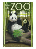 Visit the Zoo  Panda Bear Scene