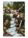 Rocky Mountain National Park  Colorado  View of Horseshoe Falls in Estes Park