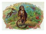 Monkey Brand Cigar Box Label