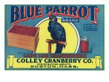 Boston  Massachusetts  Blue Parrot Brand Cape Cod Cranberry Label