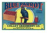 Boston  Massachusetts  Blue Parrot Brand Cape Cod Cranberry Label