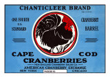 Cape Cod  Massachusetts  Chanticleer Brand Cranberry Label