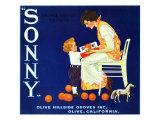 Olive  California  Sonny Brand Citrus Label