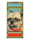 Bulldog Tobacco Label