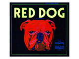 Villa Park  California  Red Dog Brand Citrus Label