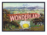 Escondido  California  Wonderland Brand Citrus Label