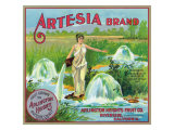 Riverside  California  Artesia Brand Citrus Label