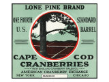 Cape Cod  Massachusetts  Lone Pine Brand Cranberry Label