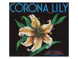 Corona  California  Corona Lily Brand Citrus Label