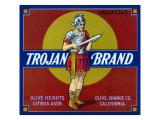 Olive  California  Trojan Brand Citrus Label