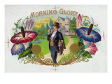Morning Glory Brand Cigar Box Label