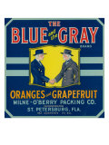 St Petersburg  Florida  The Blue and the Gray Brand Citrus Label