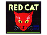 Villa Park  California  Red Cat Brand Citrus Label