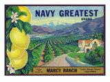 Tustin  California  Navy Greatest Brand Citrus Label