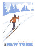 Cross Country Skier  Ithaca  New York