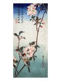 Small Bird on a Branch of Kaidozakura  Japanese Wood-Cut Print