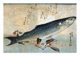 Striped Mullet  Japanese Wood-Cut Print