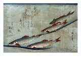 River Trout  Japanese Wood-Cut Print