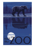 Visit the Zoo  Bear in the Moonlight