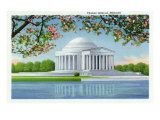 Washington  DC  View of the Thomas Jefferson Memorial  Cherry Trees