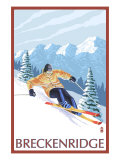 Breckenridge  Colorado  Downhill Skier