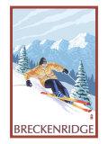 Breckenridge  Colorado  Downhill Skier