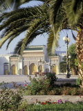 King's Royal Palace Viewed through Palm Tree  Fes  Morocco