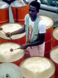 Calypso Band Cats n' Jama  Tobago  Caribbean