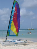 Hobie Sailboat on Palm Beach  Aruba  Caribbean