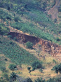 Deforestation and Erosion Landslide  Tanzania