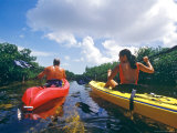 Sea Kayaking Through Mangrove on Shallow Flats of Bimini Island  Bahamas