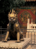 Gilded Bronze Lion at the Palace Museum  Beijing  China
