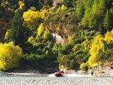 Shotover Jet  Shotover River  Queenstown  New Zealand