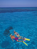 Snorkeling in Clear Waters  Bahamas  Caribbean
