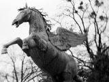 Winged Horse Statue  Mirabellgarten  Salzburg  Austria