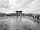 The Torri Gate  Myajima  Japan