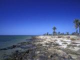 Rocky Shore of Kerkennah Islands  Tunisia