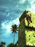 Villa Montanta  Wall Climbing  Isabel  Puerto Rico