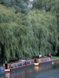 Barge on River Ouse  Ely  Cambridgeshire  England