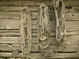Ropes on Boathouse  Sognefjord  Norway