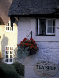 Cottages in Old Shanklin  Isle of Wight  England
