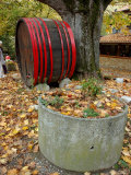 Vivarais Railway Stop and Wine Barrel  Ardeche  France