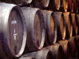Rows of Jerez Casks in Bodega  Jeres de la Frontera  Spain